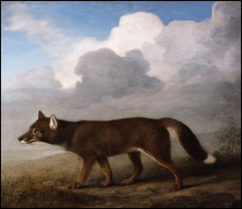 Portrait of a Large Dog, by George Stubbs